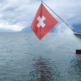 Dispatches from Switzerland